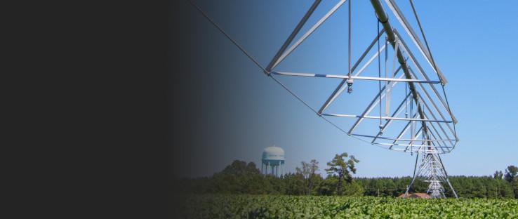 www.springpump.com-Irrigation