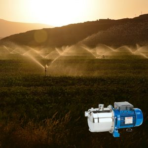 Sprinkler Pumps
